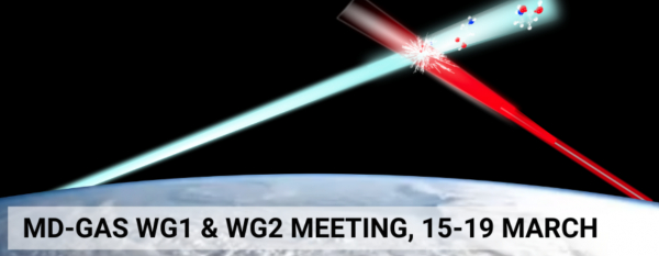 Meeting Azione COST MD-GAS, Working Group 1 e 2